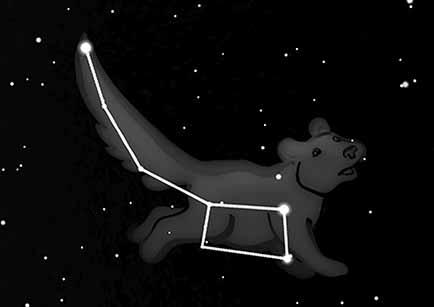 Lille Bjørn