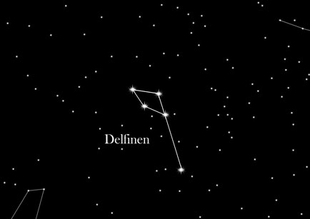 Konstellation Delfinen
