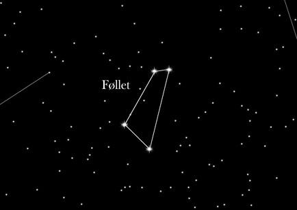 Stjernetegnet Føllet