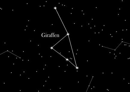 Stjernetegnet Giraffen