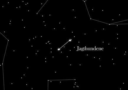 Stjernetegnet Jagthundene