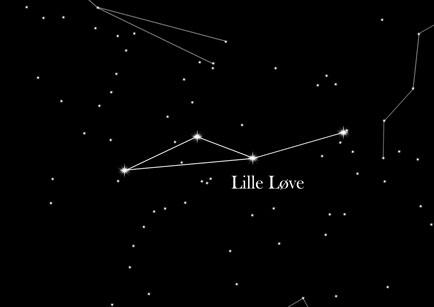 Stjernetegnet Lille Løve